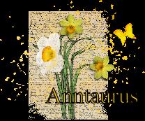 http://gallery.justartscrapbooking.com/data/500/Anntaurus_Signature.png