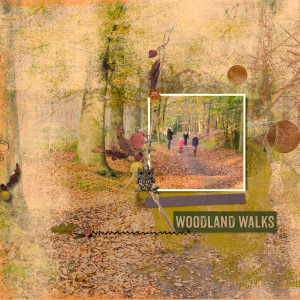 Woodland walks