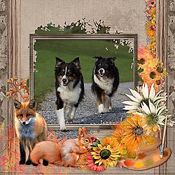 2017_09_PaintedAutumn_dogs.jpg