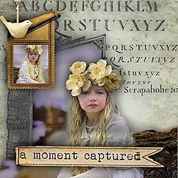 A_Moment_Captured1.jpg