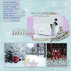 A_Snowflake.jpg