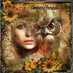 Amber_Forest.jpg