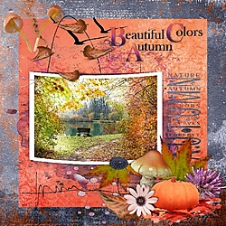 Beautiful_Colours_of_Autumn.jpg