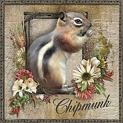 C_is_for_Chipmunk.jpg