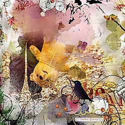 Faded-Glory-600.jpg