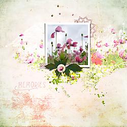 HSA_Pink_Poppies_layout1-web.jpg