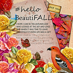 Hello_Beautifall1.jpg
