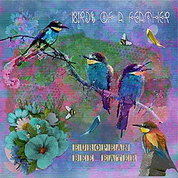 JA_Birds_of_a_Feather.jpg