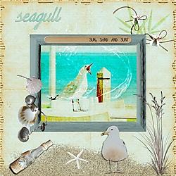 JA_seagull.jpg