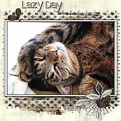 Lazy_Day.jpg