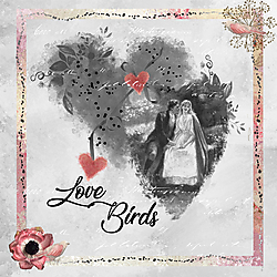 Love-Birds-for-Web.jpg