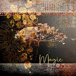 Magic-1-kopi_ren.jpg
