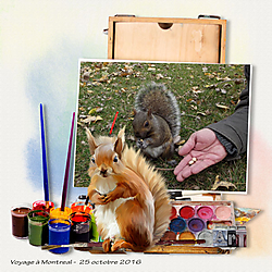 MonBoard_ecureuil_Peinture_nourriture_HOLLIEWOOD_Art-Box_photo_perso.jpg