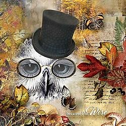 Owl-Wisdom.jpg