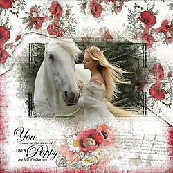 Poppy21.jpg