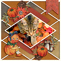 Pumpkin-Kisses.jpg