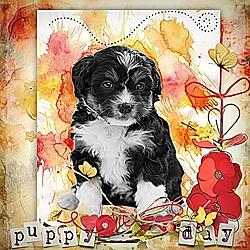 Puppy_Day_.jpg