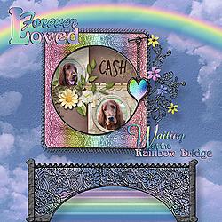 RainbowBridge-Cash-Corrected-Web.jpg