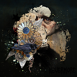 Raven-Nevermore.jpg