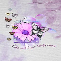 SI_Flutter_rolli1_72.jpg