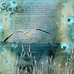 Sea_gull600.jpg