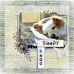 Sleepy_Head_.jpg