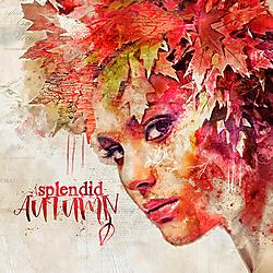 Splendid_autumn_600_web.jpg