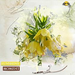 Sunshine_Moment2.jpg