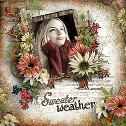 Sweater_Weather.jpg