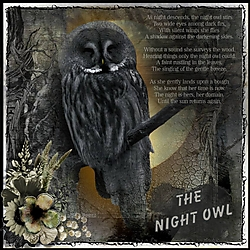 The_Night_Owl.jpg
