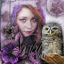 The_Night_Owl1.jpg