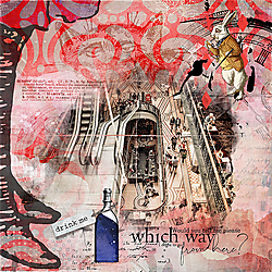 WhichWay-Alice-700-Jane.jpg