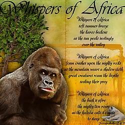 Whispers_Of_Africa.jpg
