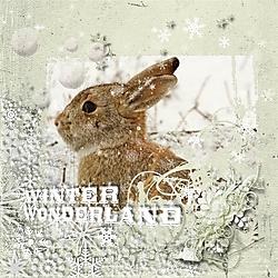 Winter_wondrland.jpg