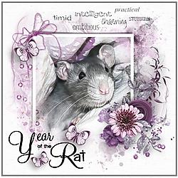 Year_of_the_Rat.jpg