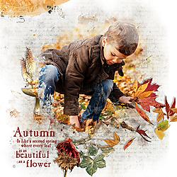 autumnislikeasecondspring.jpg