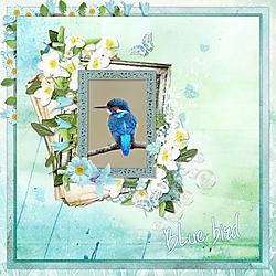 bluekl.jpg