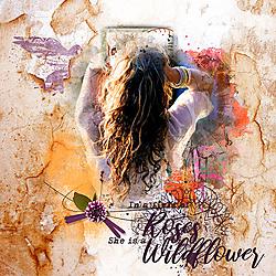 sheisawildflower.jpg