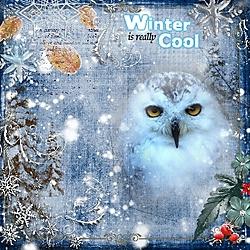 snowy_owls_2.jpg