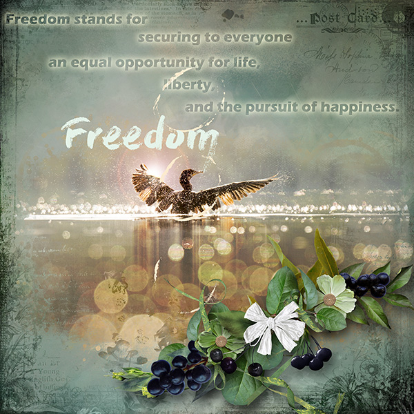 one wish_Freedom