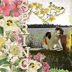 2018_04_MaskChallenge_spring.jpg