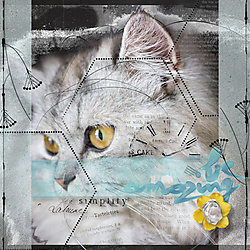 Anita_Doodle_Texture4_by_KimB_NataliDesigns_OneDay_Image_Pixabay.jpg