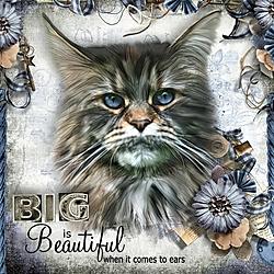 Big_is_Beautiful.jpg