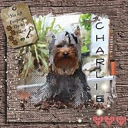 Charlie_portrait.jpg