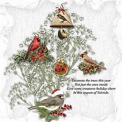 ChristmasForTheBirds-Rosie-Web.jpg