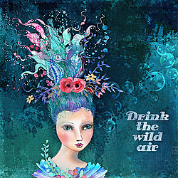 DrinkTheWildAir-Blue-Web.jpg