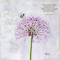 Flower600_2_.jpg