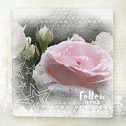 Follow_your_heart.jpg