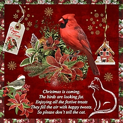 JA_Christmas_is_for_the_Birds_Two.jpg