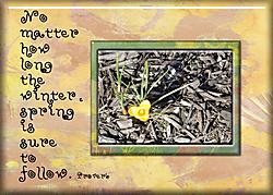 Spring-_2_.jpg